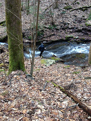 Double Culvert Branch Falls - Lower Cascade