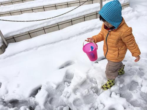 大雪の翌日昼の雪の様子