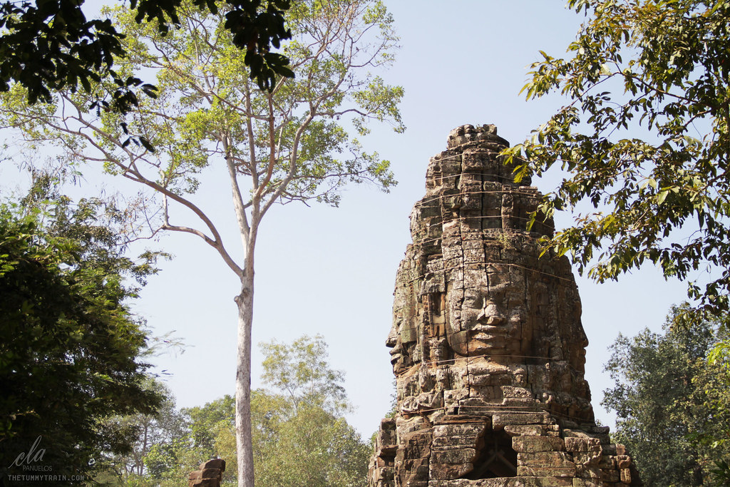 12791088655 95c369b56b b - Cambodia 2013: Affirming my appreciation for ruins in the Temples of Bayon and Ta Prohm