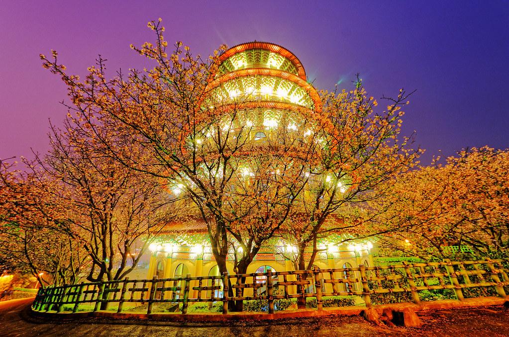 夜.櫻.天元宮