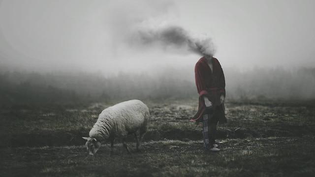 Albin Thelander - pollute