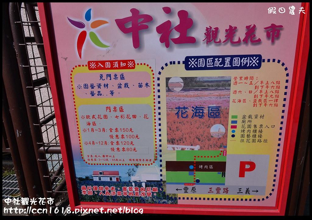 中社觀光花市DSC_1660
