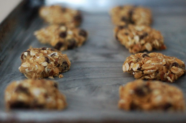 Oatmeal chocolate chip pecan cookies by Eve Fox, The Garden of Eating, copyright 2015