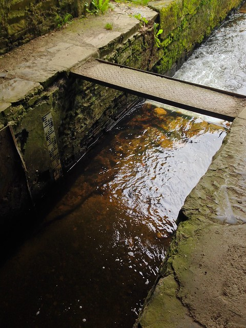 The Smallest Bridge Across the Rigole