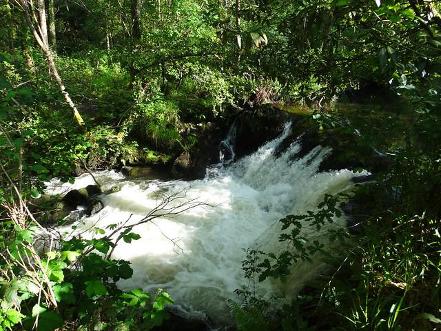 Río Mendo en Oza-Cesuras