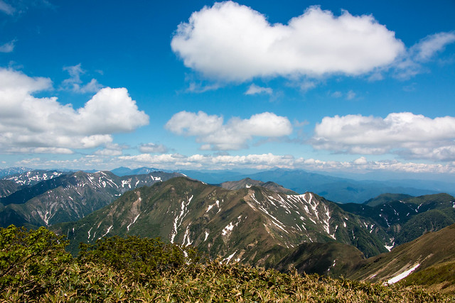 20150607-仙ノ倉山-0587.jpg