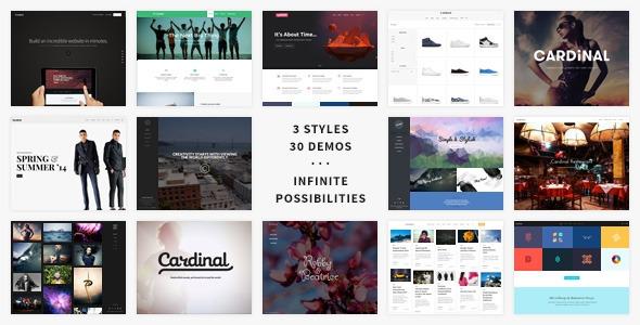 Cardinal v2.6.11 – WordPress Theme