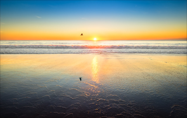 Seal Rocks Beach /Sunrise