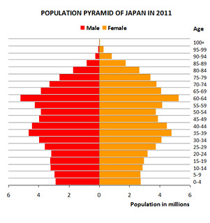 demographic pyramid