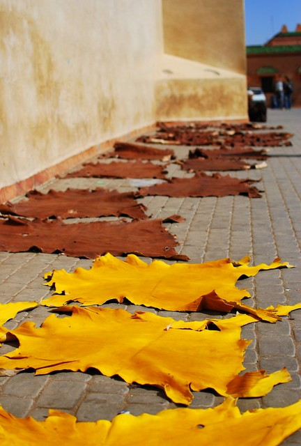 Tannery - Leather on the pavement