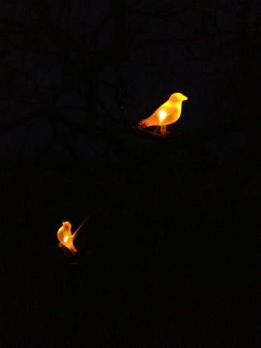 garden bird lights