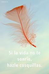 si_la_vida_no_te_sonrie