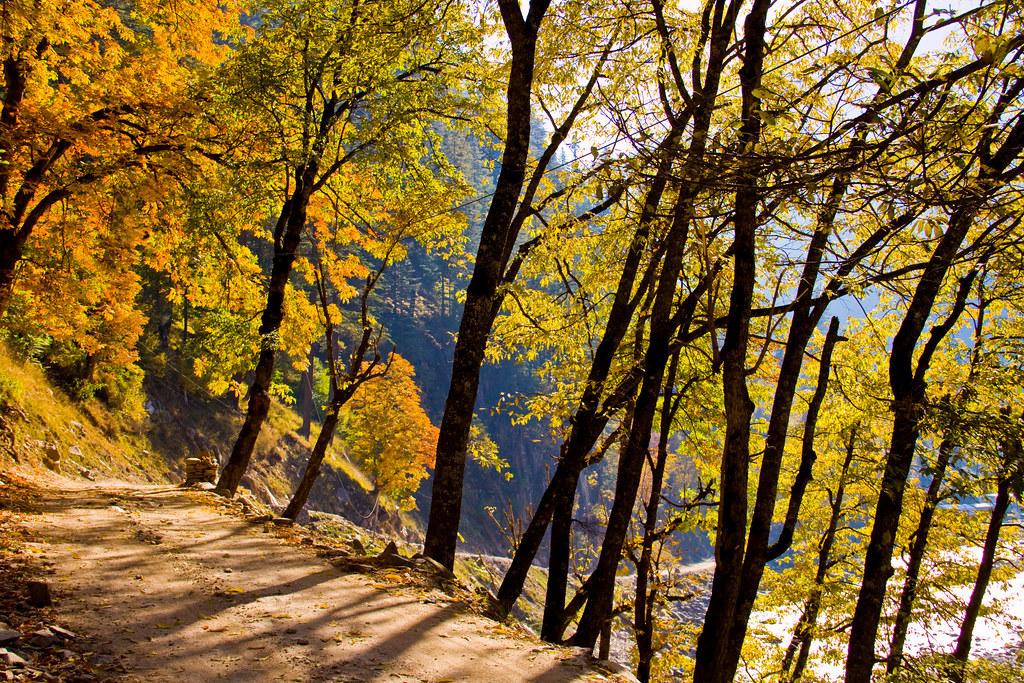 Lo maravilloso del otoño