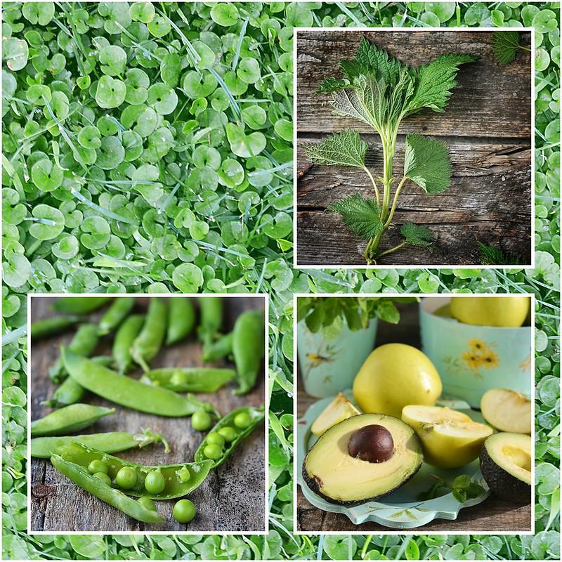 коллаж зеленые обеды