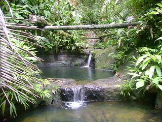 Piscina Natural del Morro