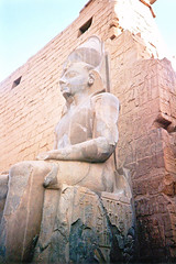 Guarding the Karnak Temple