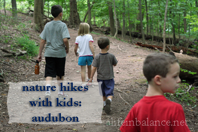 Nature Hike: Audubon in Millgrove, PA