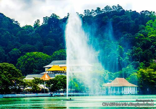 srilanka kandy kandylake nuwarawewa මහනුවර sridaladamaligawakandy නුවරවැව charithmania ශ්රීදළදාමාළිගාව charithmaniaphotography ilovekandy ශ්රීලංකාවේඅලිඇතුන් kandylakewaterfountain kandylakewaterspray
