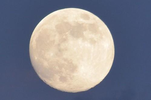 Luna Enamoradiza by FotoTanke