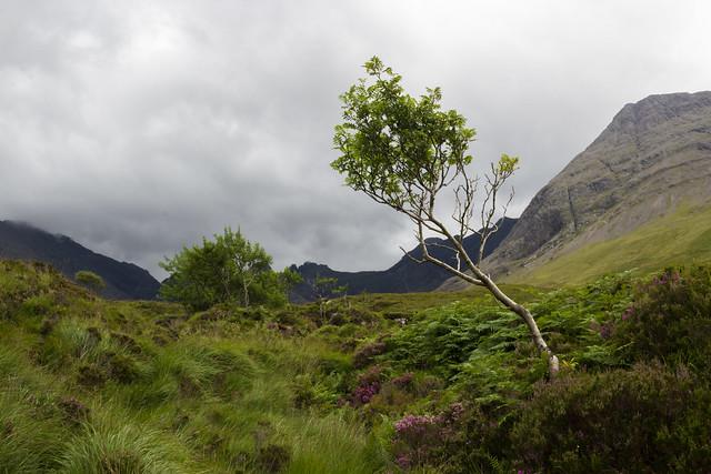 The Fae Glen - Isle of Skye