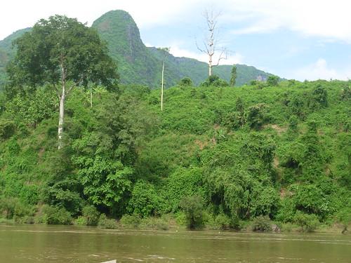Nong Khiaw-Ngoi-bateau (35)