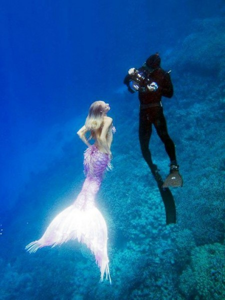 Images Of A Real Mermaid Caught In Camera