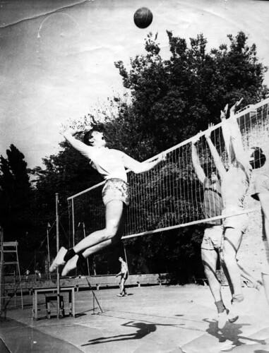 alikhanov волейбол Дипломная работа