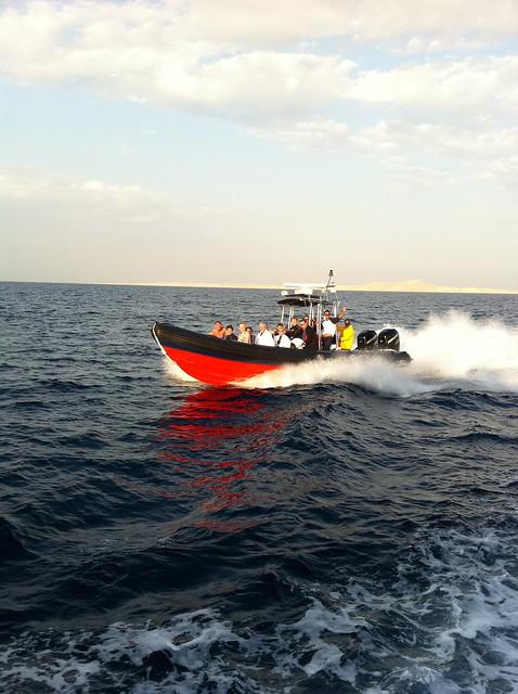 Fri, 10/28/2011 - 16:07 - Rib snorkel
