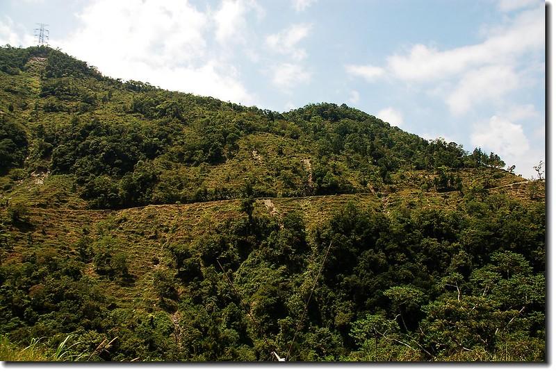 萬榮林道 3