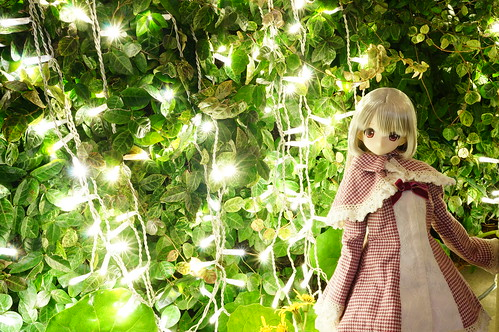 Luluna 2013 Christmas