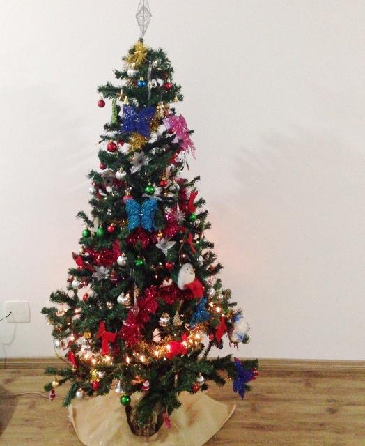 Árvore Natal - Raquel e Ari