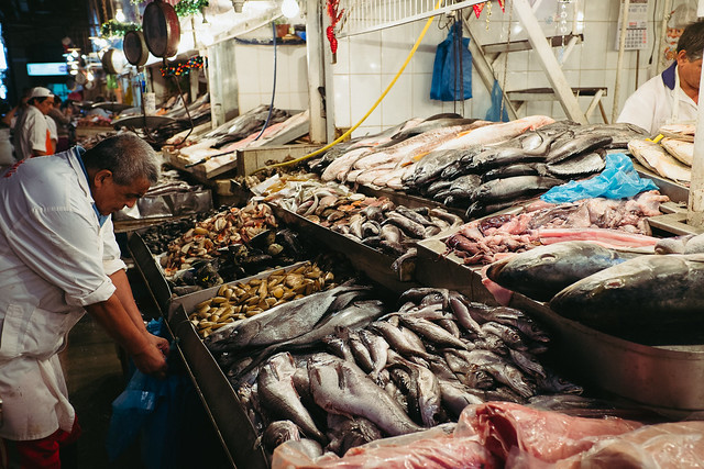 The Central Market Fishmonger-2