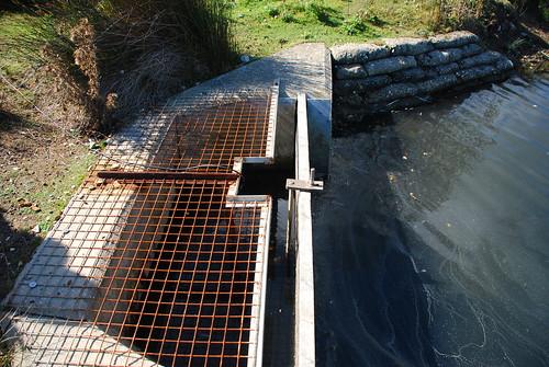 NT正監控潟湖水位變化