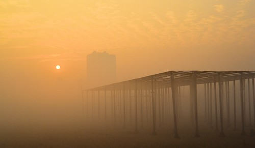 city morning winter india mist misty sunrise landscape cityscape artistic kolkata bengal calcutta maidan afloat শীতেরসকাল