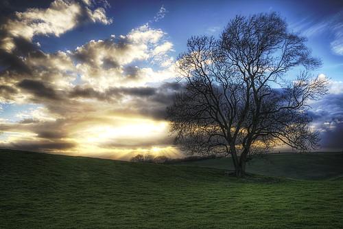 light sunset tree field canon day cloudy sigma 1750 rays 28 hdr warwickshire burton dassett 40d