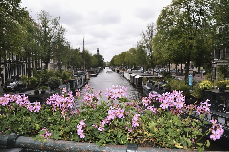 Amsterdam_2013_ 245