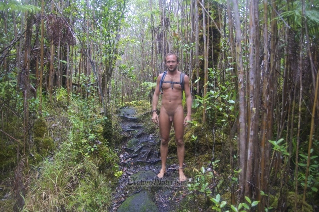 naturist 0000 Ka-hau-a-Le'a tree fern trail, Hawaii, USA