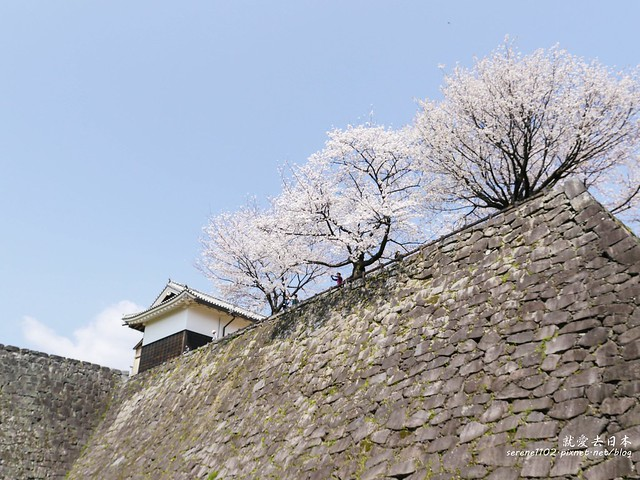 20140327山陽D2熊本-1120939
