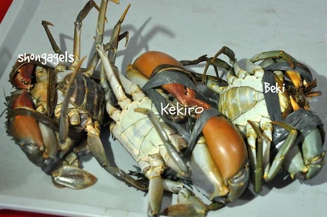 Crab Spotting
