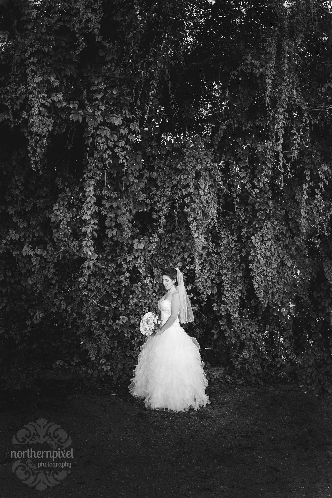 The Beautiful Bride Prince George BC Wedding PHotographers Northern Pixel PHotography