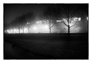 Night and fog _ 2