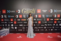 Catifa vermella VII Premis Gaudí (36)