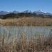 冬のため池(御牧ケ原)