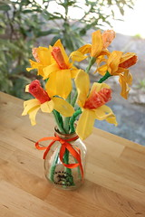 Bias Tape Daffodils