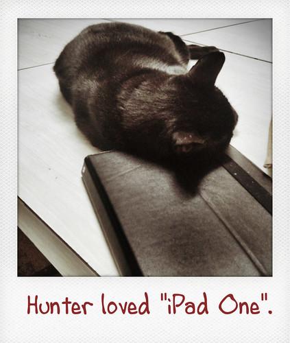 "Hunter loved ""iPad One""."