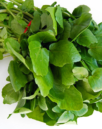 Waterkers (watercress)