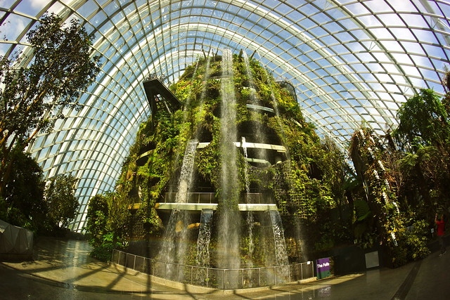 gardens by the bay singapore a gallery on flickr