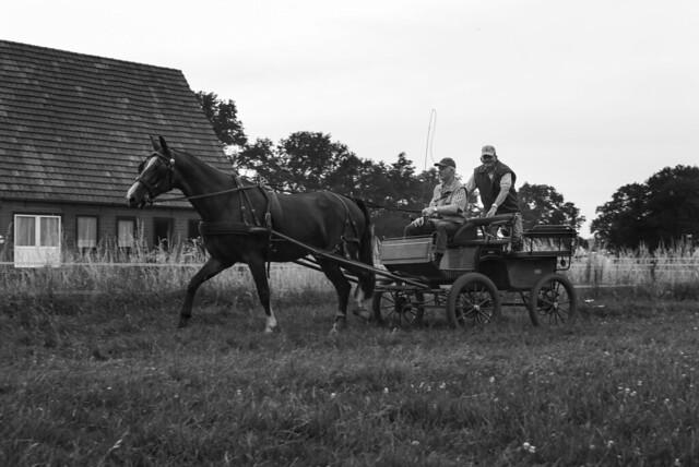 20130717 Paardenvierdaagse Woold - Woensdag