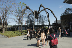 Maman, spider sculpture by Louise Bourgeois