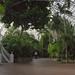 Franklin Conservatory palm house by Wayne Whitney
